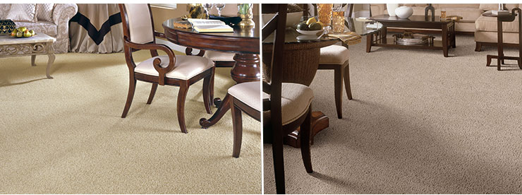 Spotlight values carpet rooms